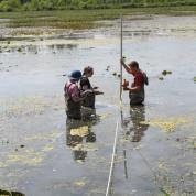 Three students standing in a still pond measuring data.